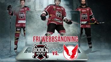 GRATIS Webbsändning: Boden Hockey vs. Kalix HC