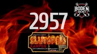 2957 sålda stödbiljetter – nionde utlottningen!